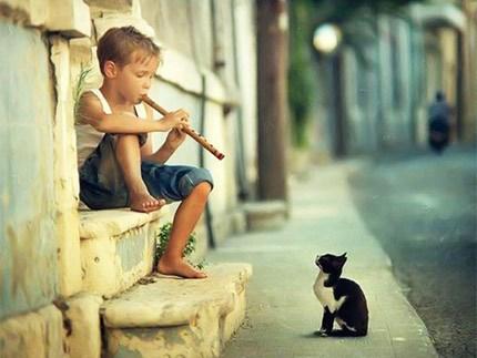 anapnoes.gr : music 430 Το πιο χαλαρωτικό κομμάτι του κόσμου