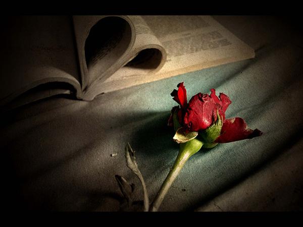 anapnoes.gr : s agapw poiima Επτά όμορφα, κλασικά ποιήματα για τον έρωτα