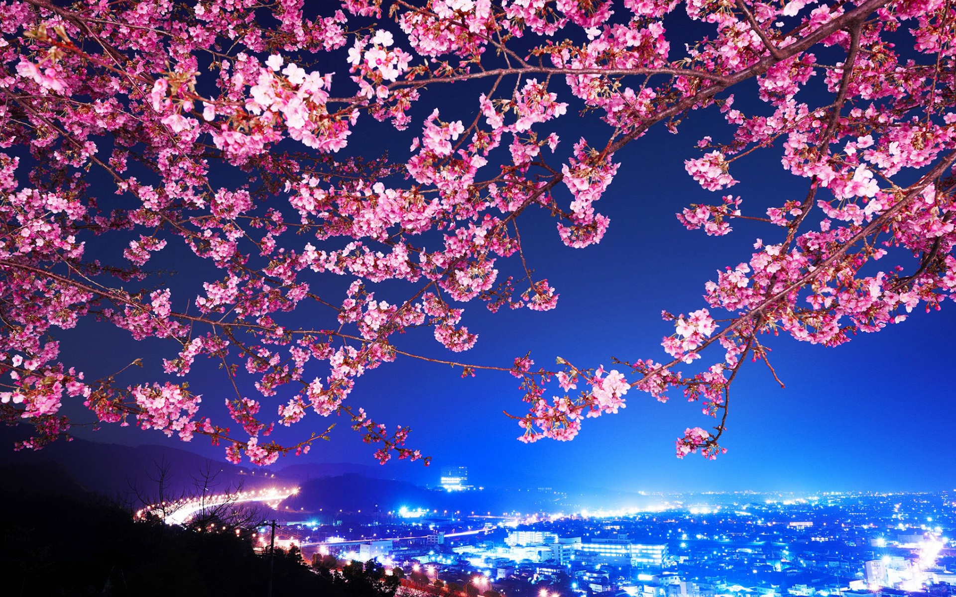 http://www.anapnoes.gr/wp-content/uploads/2016/02/Japanese-cherry-Wallpapers-HD-1920x1200.jpg