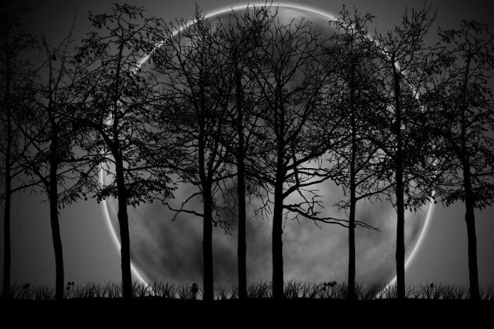 Δεν μπορεί να υπάρξει ζωή στο σύμπαν χωρίς σκοτάδι και φως.